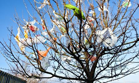 Plastic bags in tree at Southport, Merseyside